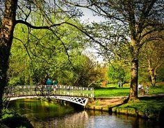 White_Bridge,_Morden_Hall_Park