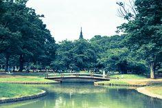 Yoyogi Park Yoyogi Park, My Photos, Explore, Photography, Photograph, Fotografie, Photoshoot, Fotografia, Exploring