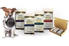 🐶 Free Salters dog food sample