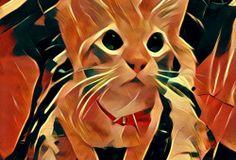 Sitio del día: Prisma, la app que hace piezas artísticas ahora en Android