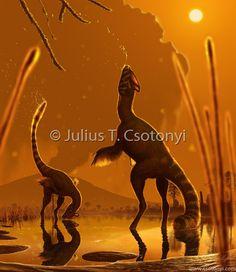 Guanglong de Julius Csotonyi