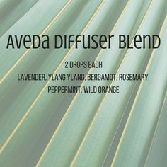 Image result for aveda diffuser blend