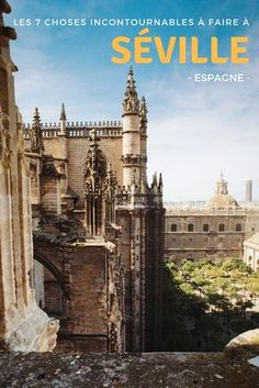 Figuring out where to eat in Seville can be tricky! This guide, full of tips for foodie gems all throughout the city, will ensure you eat only the best! Spain Travel, France Travel, Travel Usa, Best Places To Travel, Places To See, Costa, Sevilla Spain, Andalucia Spain, Spain Holidays