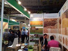 El Life Cultivos Tradicionales potencia las legumbres con motivo de la declaración de su año internacional | SoyRural.es