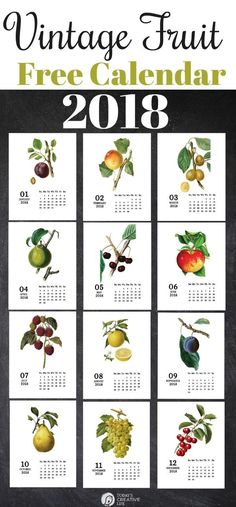 Vintage Fruit 2018 Printable Calendar | Free Calendar | Botanical Designs | Monthly calendar from TodaysCreativeLife.com