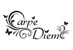 Carpe diem is een Latijns spreekwoord dat Pluk de dag betekent. De zinsnede is afkomstig van de Romeinse dichter Horatius (Ode 11 uit Boek 1).  Carpe diem dient als metafoor ter aansporing om de dag van heden te gebruiken en om niet tot morgen uit te stellen wat vandaag gedaan kan worden.