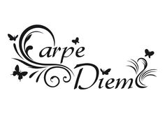 love this one carpe diem for painting