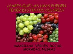 Vendimiamos Fails, Fruit, Shape, Red Green, School, Projects, The Fruit