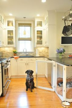 The Crate Conundrum: A Safe Place for Your Pooch | Can't sacrifice storage? Build a cozy cuddle zone for multiple pets by enclosing a space, as this homeowner did by fencing in a seldom-used breakfast nook.