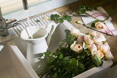 Rosas David Austin |  Luxury Flowers