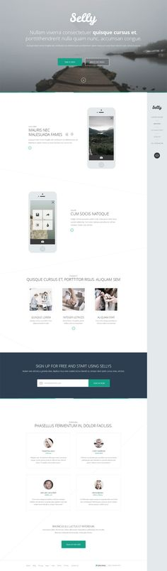 Selly - Clean Landing Page Template