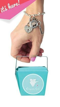 Origami Owl bracelets will be here this weekend (Nov 8th). They make a perfect Christmas present! www.walker.origamiowl.com