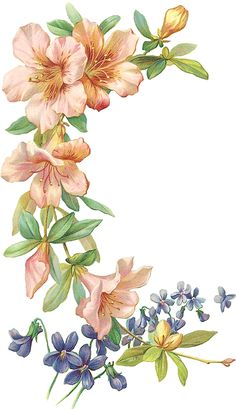 floral theme Art Floral, Floral Theme, Botanical Flowers, Botanical Prints, Flower Frame, Flower Art, Cross Stitch Flowers, Pictures To Paint, Paint Designs