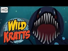 Explore the ocean and all of the amazing life it contains with the Kratts! Now you can go wild with the Wild Kratts every Wednesday with a brand new video on. Ocean Animals For Kids, Dolphins For Kids, Sharks For Kids, Beach Crafts For Kids, Ocean Crafts, Youtube Videos For Kids, Kids Videos, Ocean Video, Wild Kratts