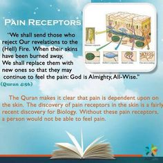 the miracle of quran ..