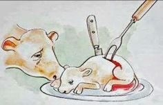 This is your milk, cheese, and veal :(