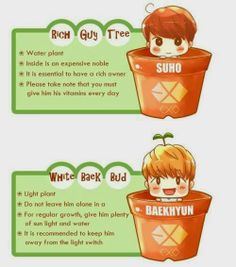 Suho and Baekhyun plants fan art Cr: owner who ever they are, IM sorry I cant give you proper credit.