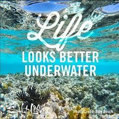 Doesn't it? #SaltLife #scubadivingquotes