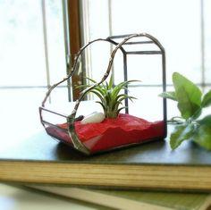 Glass Terrarium Valentine Air Plant by JechoryGlassDesigns on Etsy, $40.00