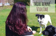 henne-violine-cheveux-coloration-vegetale-naturelle
