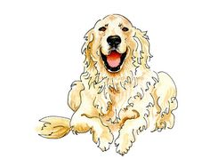 English Cream Golden Retriever Happy Cute Pet Portrait Gift Idea Men Dog Lovers Drawing Pen & Ink Watercolor Angel Memorial Ivory Blue Gold