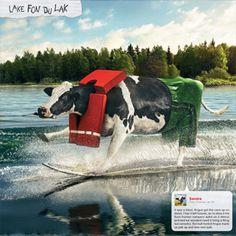 June -  fun times on the lake