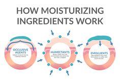 How Moisturizing Ingredients Work