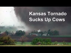 Video~Kansas tornado sucks up cows and blows farm apart Fire Tornado, Weather Storm, Wild Weather, Severe Weather, Extreme Weather, Tornado Pictures, Dame Nature, Stormy Night