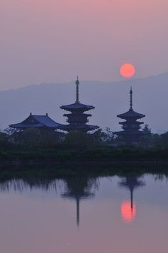 sakurainsapporo: Nara, Japan Please Visit: Sakura in Sapporo