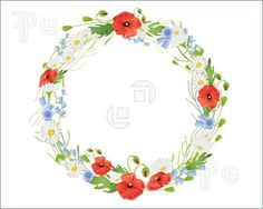 Illustration of an illustration of a circular wreath of summer wildflowers with poppies harebells and daisies on white