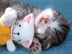 sleeping... Too precious!!
