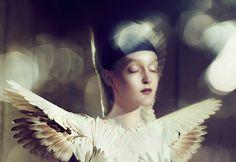 The Babybird via Flickr, Elizaveta Porodina