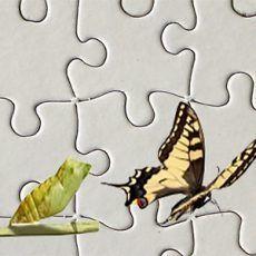 aforismi, cambiamento, vivere, mutare