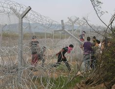 Refugees try to cut the border fence near their makeshift camp at the Greek-Macedonian border in Idomeni