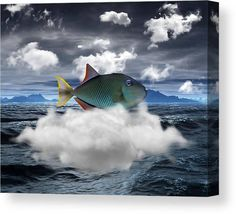 Triggerfish Canvas Print featuring the mixed media Triggerfish Out Of Water by Marvin Blaine