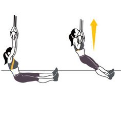 Fix a TRX suspension trainer around a bar and sit directly under it on the floor, legs extended straight in front of you; grab both handles, arms straight (a). Without leaning back, bend your elbows and pull your upper chest toward the handles (b). Pause, then slowly lower yourself back to the starting position. That's one rep.