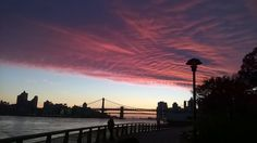 We get some spectacular sunsets down by the river. Can you spot the tiny Statue of Liberty under the bridge?