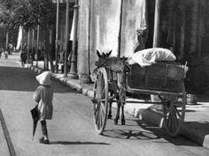 Αθηνάς 1903 (video)