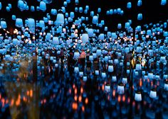 FOREST OF RESONATING LAMPS BY TEAMLAB - When people pass close to a lamp it shines brightly and emits a tone color that resonates out. #MO16 ©GovinSorel