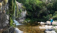 Enjoy Western Cape Rock Pools Plus the Variety of Wildlife and Flora Natural Swimming Pools, Picnic Spot, Rock Pools, Private Pool, Things To Do, Flora, Waterfall, Wildlife, Cape Town