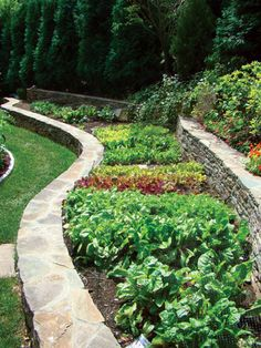 """How Landscape Architect Jan Johnsen Transformed One Chappaqua Property's Steep Hill - Westchester Home - Spring 2012 - Westchester, NY  """"For an unusual but functional salad garden, Johnsen built a curvaceous stone wall to brace a raised bed holding lettuce, Swiss chard, arugula, and spinach."""""""