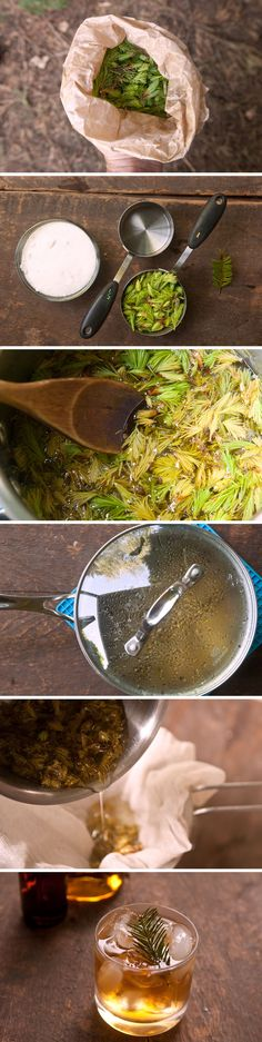 Did you know you can eat the new shoots and needles that grow on pine, spruce, and fir trees? Learn how to turn them into a tasty syrup to mix with club soda or make flavorful foraged cocktails!