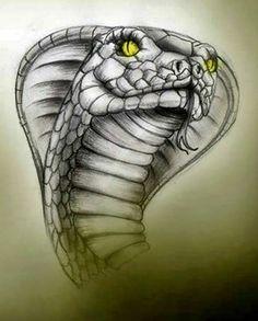 Dark Art Drawings, Tattoo Design Drawings, Art Drawings Sketches, Tattoo Sketches, Snake Painting, Snake Drawing, Snake Art, Animal Sketches, Animal Drawings