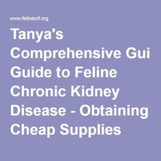 Tanya's Comprehensive Guide to Feline Chronic Kidney Disease - Obtaining Cheap Supplies USA