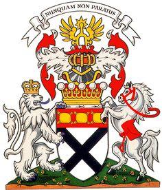 Johnstone chief arms