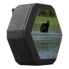 Black Bear Black Bluetooth Speaker