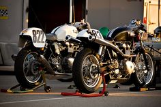 """motorcycles-and-more: """" Triumph Thruxton"""" Triumph Cafe Racer, Cafe Racer Bikes, Cafe Racers, Triumph Thruxton 900, Triumph Motorcycles, Custom Motorcycles, Honda 750, Classic Bikes, People Art"""