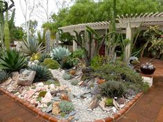 Garden, : Interactive Succulents Garden Design Ideas With Visible White Beam Ceiling, Brown Brick Garden Edge And Cactus Garden Succulent Landscaping, Succulent Gardening, Cacti And Succulents, Planting Succulents, Backyard Landscaping, Backyard Patio, Landscaping Ideas, Dry Garden, Brick Garden