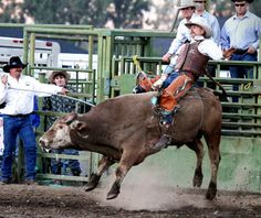 Bull riding bonanza Darby Elite Bull Connection returns to rodeo grounds Saturday, July 13