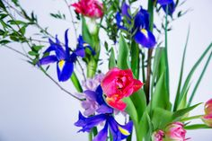 Tulips and Irises arrangement | Ikebana Beautiful by Desiree Castelijn